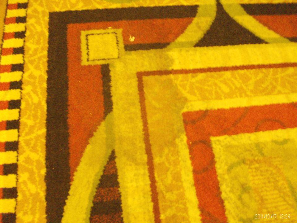 hall-puked-carpet
