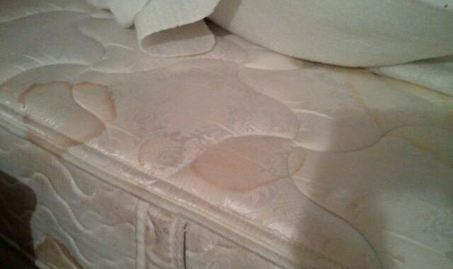 stained queen bed at Quality Inn-Anaheim