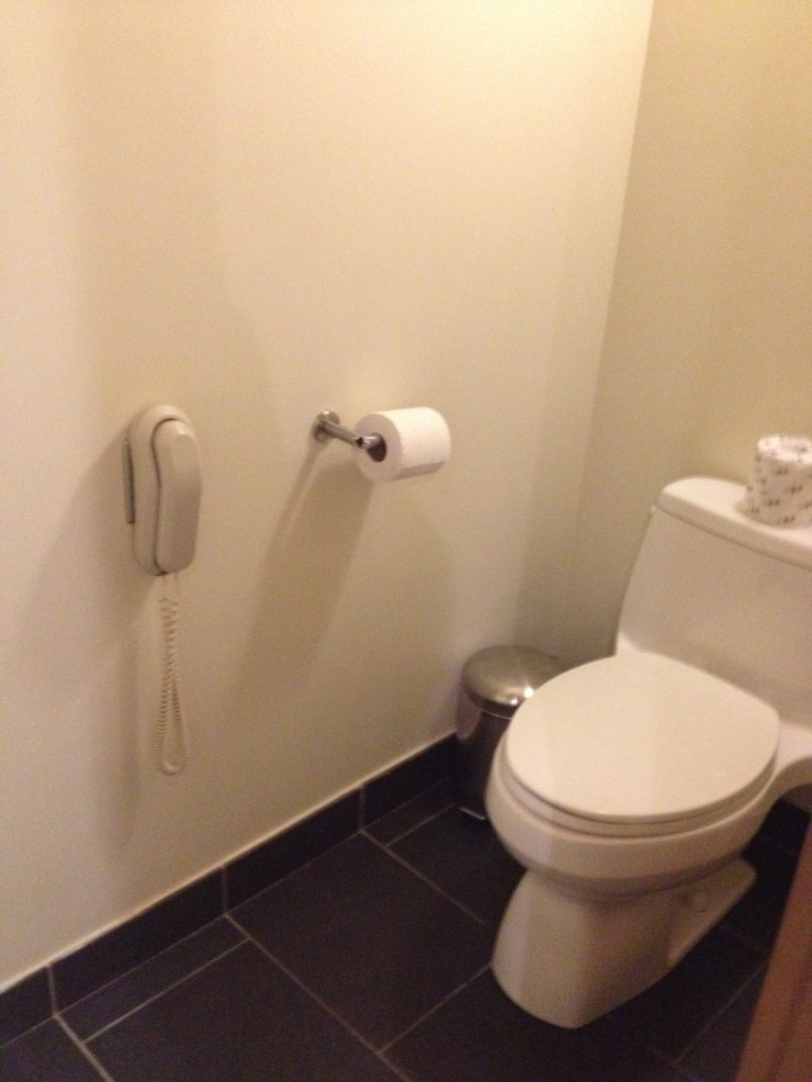 Hotel Phone Toilet