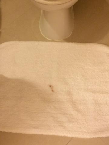 Hotel Blood Rug