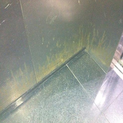 Hotel Princess Elevator