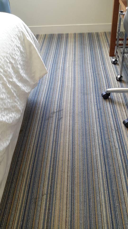 Hotel Sheraton Carpet