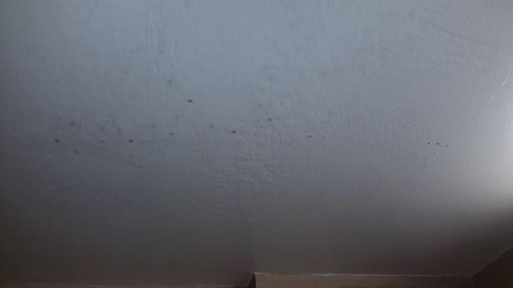 Hotel Ceiling Splatter
