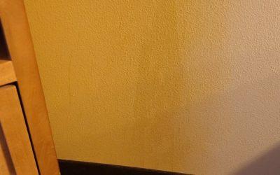 Actual Wall Pee?